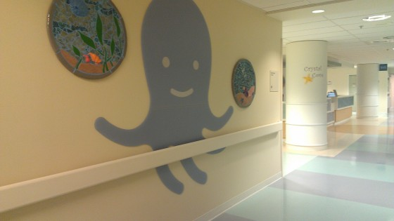Large octopus on the wall