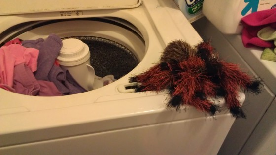 Fuzzy stuffed HUGE spider on a washing machine